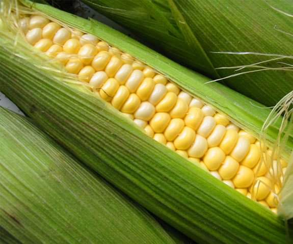 Lorraine Walker: Sweet corn, birthdays, and rain